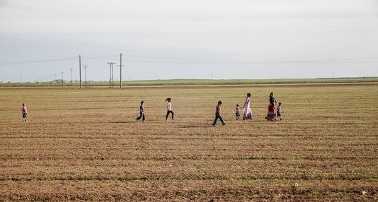 Syrian kurdistan. Fin de journée, retour du travail dans les champs.